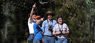 Spotlighting with Alan's Wildlife Tours