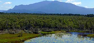North Queensland Wildlife Tours